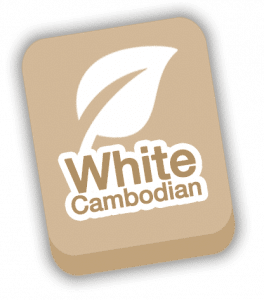 White Cambodian strain icon