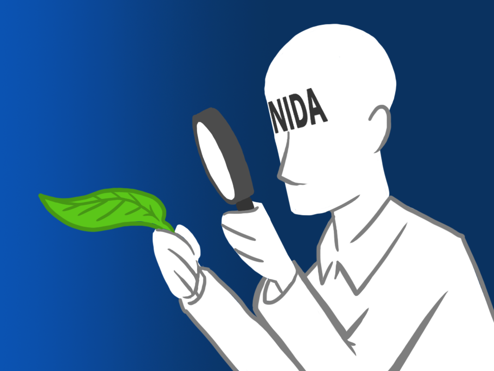 NIDA figure holding a magnifying glass to a kratom leaf